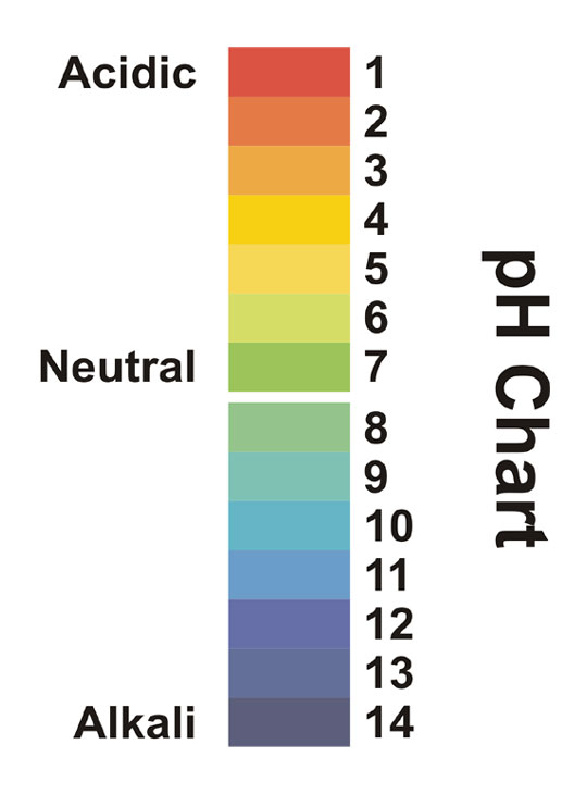 Ph Chart  Chemistry  Printer Friendly Page  PreproomOrg