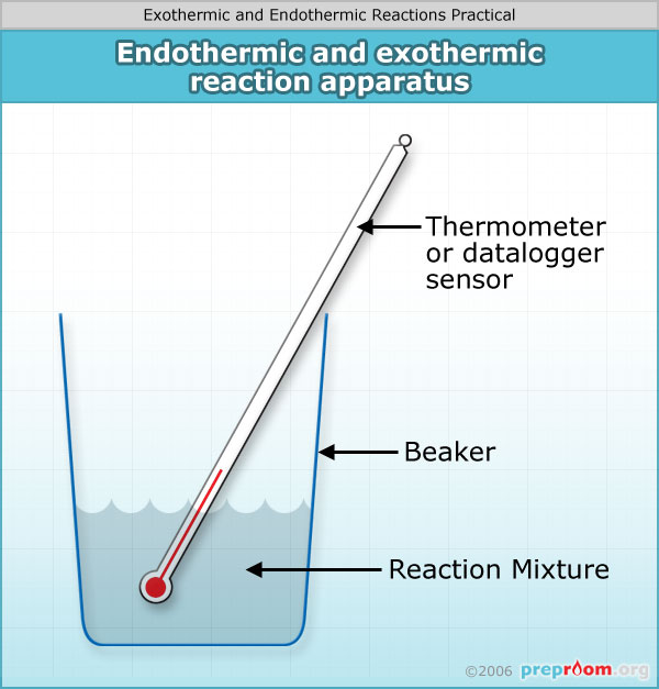 Making Real-World Connections with Exothermic Reactions